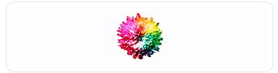 Chakra kleuren bloem
